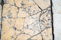 Free Sidewalk Tile, The Texture Of The Sidewalk On The Temple Mount In Jerusalem. Royalty Free Stock Photography - 111204377