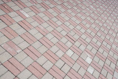Sidewalk tile. Two-tone pavement tile on the street Royalty Free Stock Photography