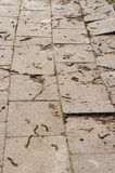 Sidewalk tiles Royalty Free Stock Photography