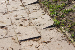 Sidewalk tiles Royalty Free Stock Photos