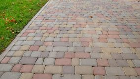 Sidewalk of tiles. On the side is a strip of green grass