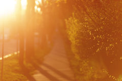 Sidewalk in town with sunset light, shallow focus Royalty Free Stock Photos