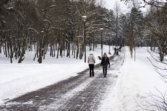 A sidewalk in a winter park and walking people Royalty Free Stock Images