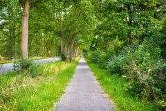 Sideway του δρόμου επαρχίας στη θερινή φύση Μονοπάτι με τα πράσινα δέντρα και χλόη στις πλευρές Κατεύθυνση και προορισμός στοκ εικόνα με δικαίωμα ελεύθερης χρήσης