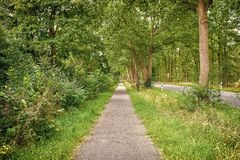 Sideway του δρόμου επαρχίας στη θερινή φύση Μονοπάτι με τα πράσινα δέντρα και χλόη στις πλευρές Κατεύθυνση και προορισμός στοκ φωτογραφίες
