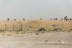 Sideway pustynia Iść Wyjeżdżające Wielka pustynia Dubaj Obraz Stock