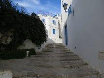Sidi Bou сказало, деревня famouse с традиционной тунисской архитектурой стоковая фотография