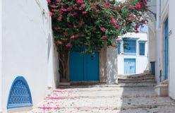 Sidi Bou sade Royaltyfri Bild