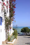 Sidi Bou Said, Mediterranean Sea, Arabian Architecture Stock Photography