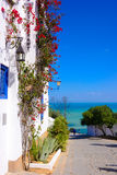 Sidi Bou Said, Mediterranean Sea, Arabian Architecture. Tradicional tunisian street with white buildings with blue doors and window shutters at picturesque royalty free stock images