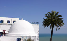 Sidi Bou Said - Mediterranean Sea and Palm Tree Stock Image