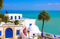 Sidi Bou Said - Mediterranean Sea and Palm Tree. Traditional tunisian terrace café with white buildings with blue doors and window shutters at picturesque Stock Photo