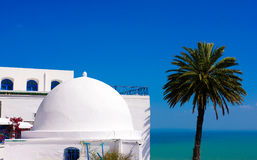 Sidi Bou Said - Mediterranean Sea and Palm Tree. Traditional tunisian terrace café with white buildings with blue doors and window shutters at picturesque royalty free stock photography