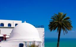 Sidi Bou Said - Mittelmeer und Palme Lizenzfreie Stockfotografie
