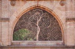 Sidi saiyed jali Ahmedabad Obraz Stock