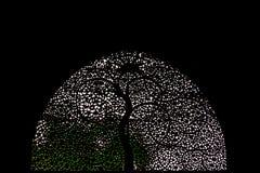 Sidi Saiyyed清真寺, Ahmadabad 免版税库存图片