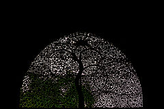 Sidi Saiyyed meczet, Ahmadabad Obraz Royalty Free