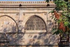 Sidi Saiyyed moské på Ahmedabad i indier royaltyfri foto
