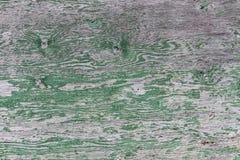 Siding древесной зелени Стоковые Изображения RF
