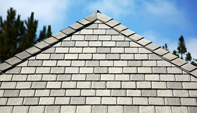 Siding and roof line. Roof line with siding stock photos