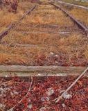 sidings стоковое изображение rf