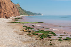 Sidmouth. Stock Images