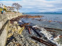 Sidney BC shore with driftwood after the windstorm. Vancouver Island, British Columbia, Canada Stock Images