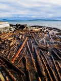 Sidney BC shore with driftwood after the windstorm. Vancouver Island, British Columbia, Canada Stock Photography
