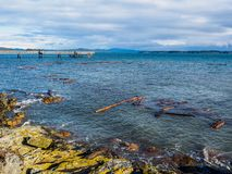 Sidney BC shore with driftwood after the windstorm. Vancouver Island, British Columbia, Canada Royalty Free Stock Image