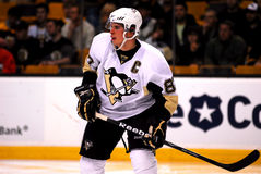Sidney Crosby Pittsburgh Penguins. Pittsburgh Penguins superstar Sidney Crosby #87 Royalty Free Stock Photo