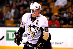 Sidney Crosby Pittsburgh Penguins Fotografia Stock