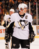 Sidney Crosby Pittsburgh Penguins Fotografia de Stock Royalty Free