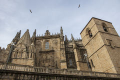 Sidofasad av Catedral de Santa Maria av Plasencia, Spanien Arkivbild