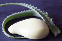 Sidor av aloe vera, tvål med aloe Royaltyfria Foton
