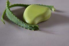 Sidor av aloe vera, tvål med aloe Arkivbild