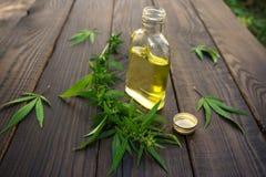 Sidor av cannabis och flaskan med hampaolja på mörk träsurfa arkivbilder
