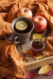 Sidor för höst för halsduk för drink för varmt citronhonungte värmehemtrevliga royaltyfria bilder
