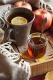 Sidor för höst för halsduk för drink för varmt citronhonungte värmehemtrevliga fotografering för bildbyråer