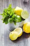 Sidor för ny mintkaramell med limefrukt och citronen för att förbereda mojito Arkivfoto