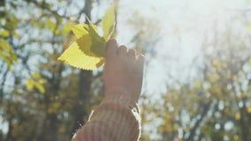 Sidor i händerna av en flicka arkivfilmer