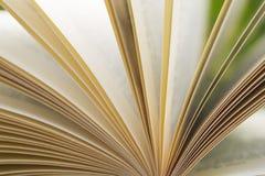 Sidor på en öppen bok royaltyfria bilder