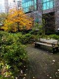 Sidor som ändrar i i stadens centrum Vancouver, F. KR. arkivbilder