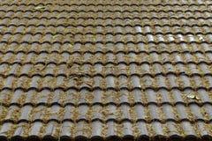 Sidorna faller på det bruna taket av huset arkivfoto