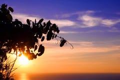 Sidorna med solnedgång för blå himmel Arkivfoton