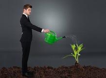 Sidosikt av affärsmannen som bevattnar växten royaltyfri foto