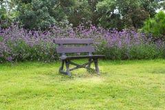 Sidosikt av bänken i trädgård Arkivfoton