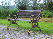 Sidosikt av bänken i trädgård Arkivbilder