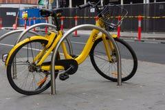 Sidosikt av cyklar för guling som OFO parkeras i parkeringsplatsen Arkivbild