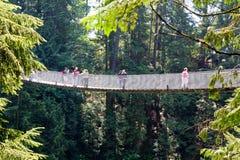 Sidosikt av den Capilano upphängningbron i Vancouver, Kanada Arkivbild