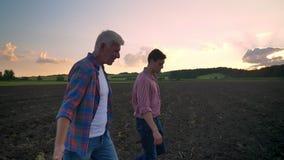 Sidosikt av den gamla fader- och vuxen människasonen som går på det kultiverade fältet, härligt landskap med solnedgång i bakgrun stock video